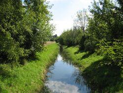 Kanal Brodnowski Ksiecia Ziemowita.jpg