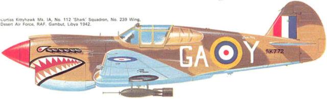 File:3 P40E-1 239th wing 112th squad.jpg