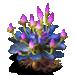 EXP Plant Ripe
