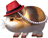 File:Chubby Guinea Pig.png