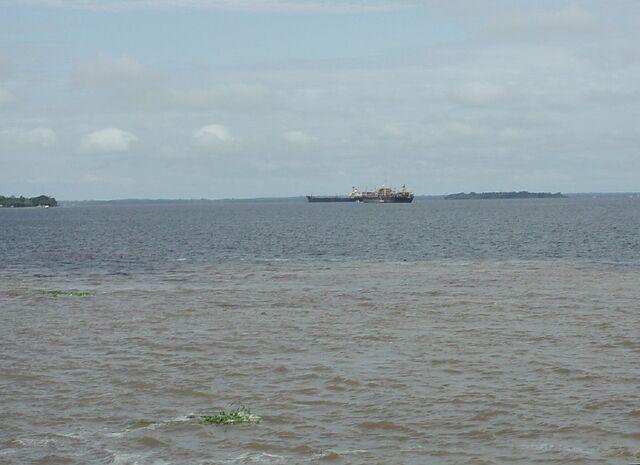 File:Amazon near Manaus.jpg