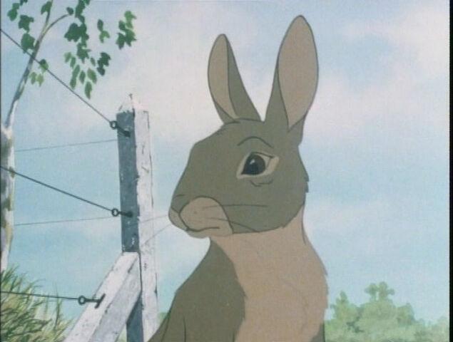 File:Hazel in the film.jpg