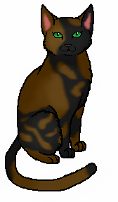 File:Tawnypelt.warrior.png