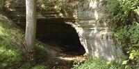 Warrior's Den