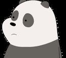 Panda Bear (Canon)
