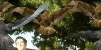 Birdemic