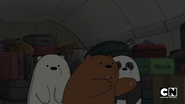 S02 Baby Bears on a Plane (23)