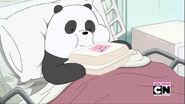 Panda's Date 181