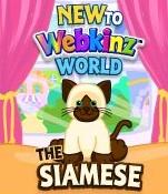 New to WW Siamse