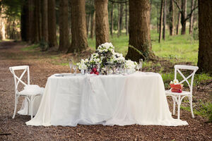 Snow-white-wedding-inspiration003