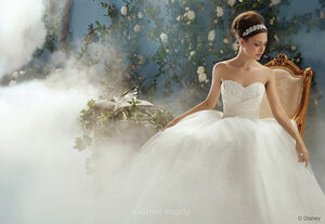 Cinderella-wedding-gown