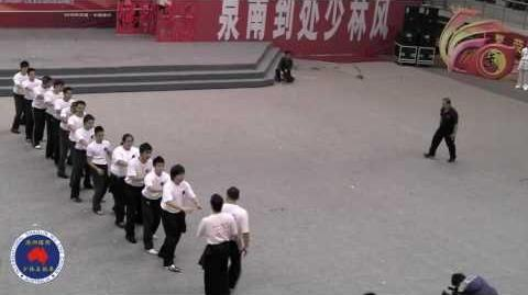 Qi Gong Demonstration by Master James Chee in Quanzhou 2010-0
