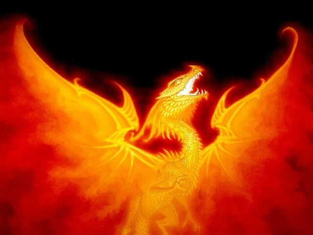 File:Fire-Duuude-D-griffins-and-dragons-30878756-800-600.jpg