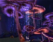 MushroomLand.jpg