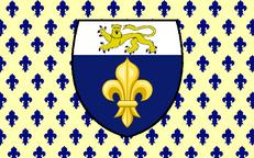 Flagge Frankreichs unter der Roi Dynastie