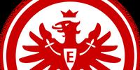 2013-14 Eintracht Frankfurt Home