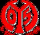 2014-15 1. FSV Mainz 05 Home