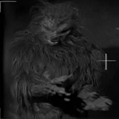 File:Werewolf Marta.png