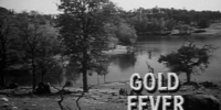 Gold Fever (Rawhide episode)