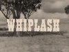 Whiplash episode