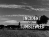 Incident of the Tumbleweed