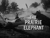 The Prairie Elephant