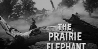 The Prairie Elephant