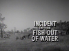 Incident of the Fish Out of Water