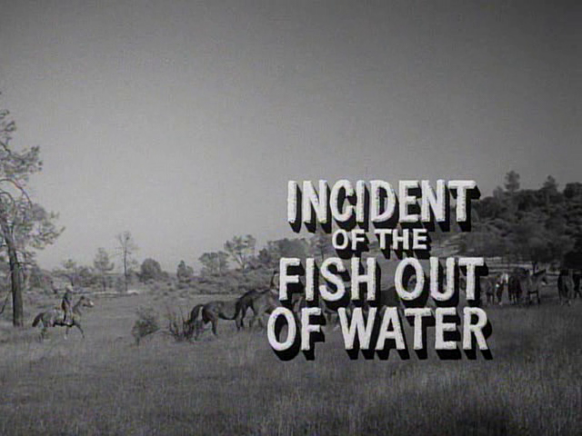 File:Incident of the Fish Out of Water.png