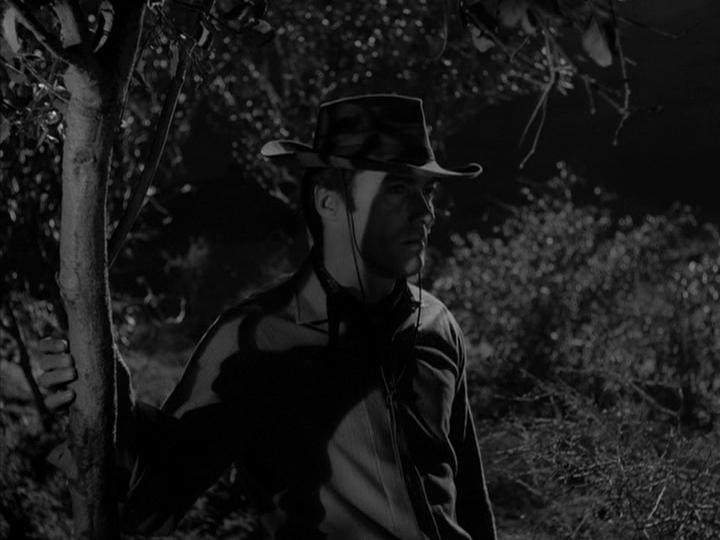 Rawhide season 5 episode 17 - Parineeta 1953 watch online