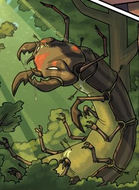 File:Treewalker.jpeg