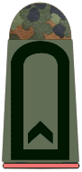 File:Army Sergeant.png