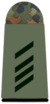 Army Specialist 2nd Class