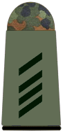 File:Army Specialist 2nd Class.png