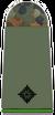 Army 2nd Lieutenant