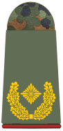 File:Army Brigadier General.png