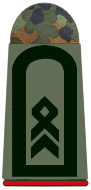 File:Army First Sergeant.png