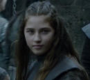 Lyanna Stark (serial)