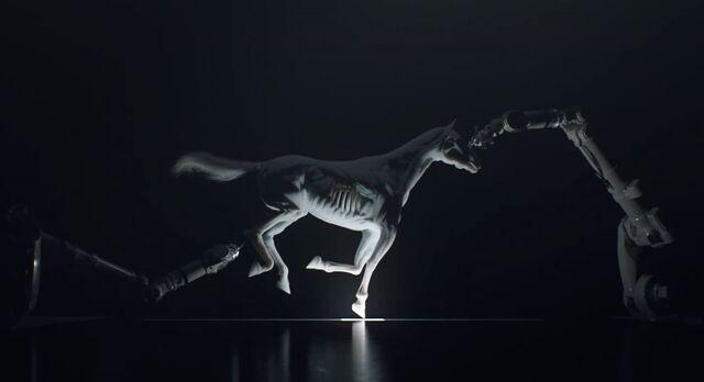 File:Horse Printing.jpg