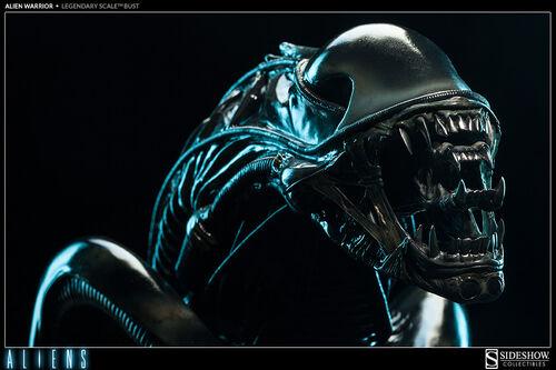 Alien Warriorsideshow