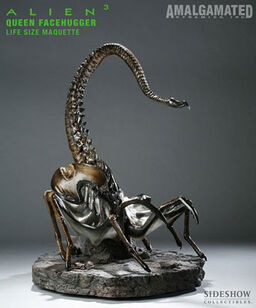Queen Facehugger (Sideshow Collectibles)