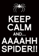 Keep calm and aaaahh spider by kkbatoretto-d5204bt