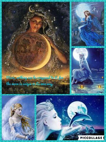 File:Moon Appreciation Photo.jpg