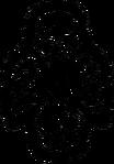 LogoNosferatu