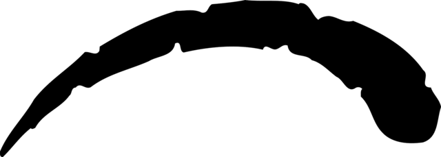 File:GlyphGaia.png
