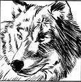 Thumbnail for version as of 01:42, September 17, 2013