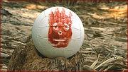 Pet Wilson