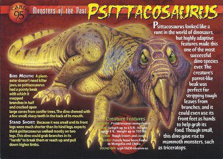Psittacosaurus front