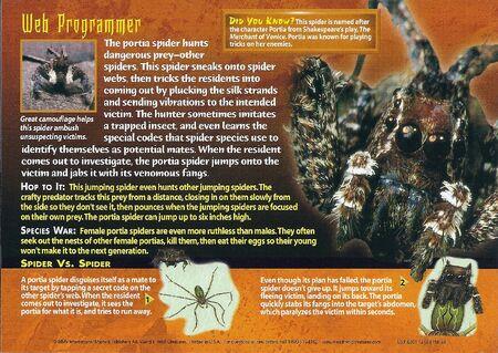 Portia Spider back