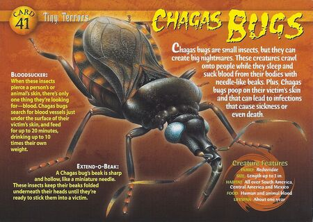 Chagas Bugs front